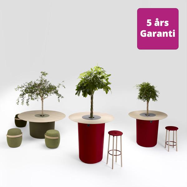 Billede af bord med plante