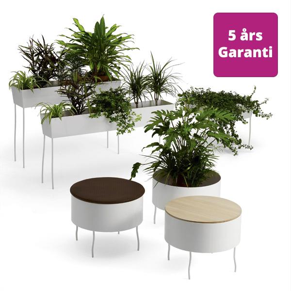 Billede af planteborde